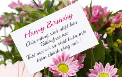 Hướng dẫn viết lời chúc lên ảnh làm bức thiệp hoa chúc mừng sinh nhật đẹp