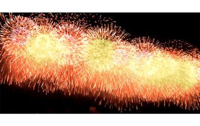 Hình ảnh động pháo hoa chúc mừng năm mới – Happy New Year