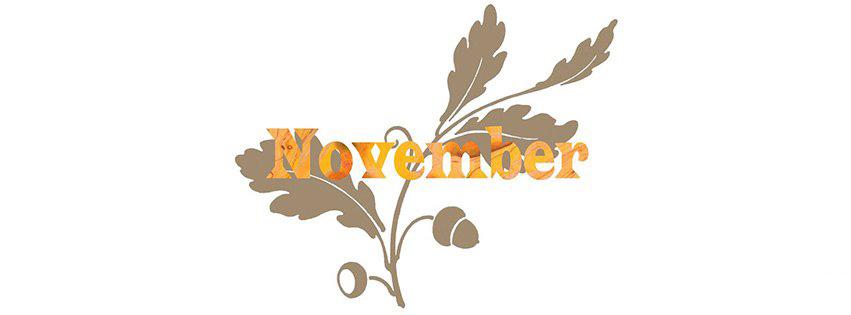 anh-bia-chao-thang-11-hello-november-15
