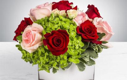 Những lãng hoa, bó hoa chúc mừng sinh nhật lung linh sắc màu