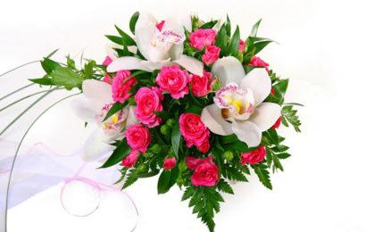 Tuyển tập bài thơ hay chúc mừng ngày phụ nữ Việt Nam 20/10 hay