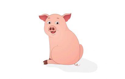 Hình ảnh chú lợn vui nhộn chào đón năm mới 2019 kỷ hợi đẹp