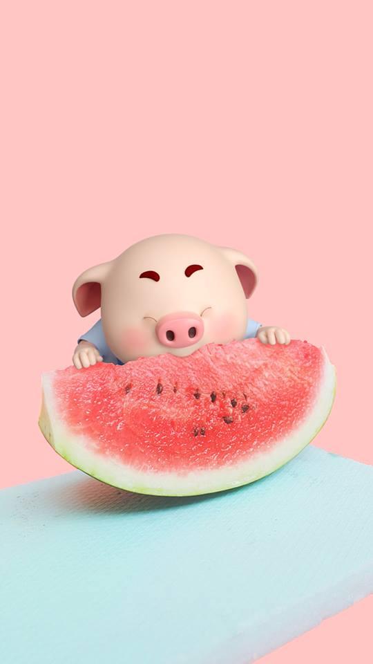 Hình nền chú lợn con ủn ỉn độc đáo và dễ thương cho smartphone Android số 35