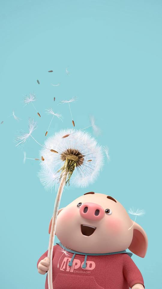 Hình nền chú lợn ủn ỉn hài hước vui nhộn cho điện thoại Iphone đẹp số 14
