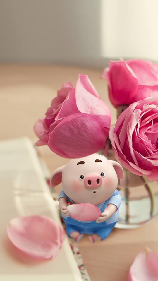 Hình nền chú lợn ủn ỉn hài hước vui nhộn cho điện thoại Iphone đẹp số 15