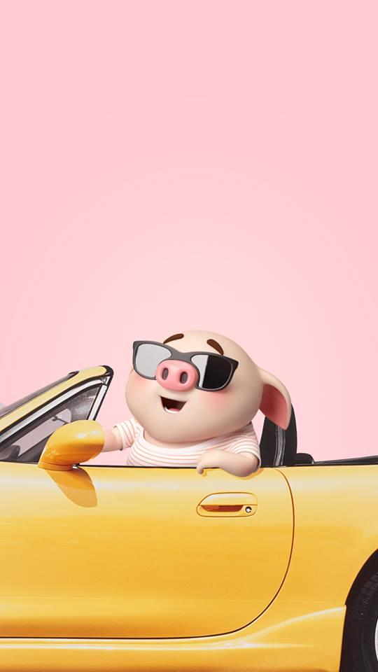 Hình nền chú lợn ủn ỉn hài hước vui nhộn cho điện thoại Iphone đẹp số 2