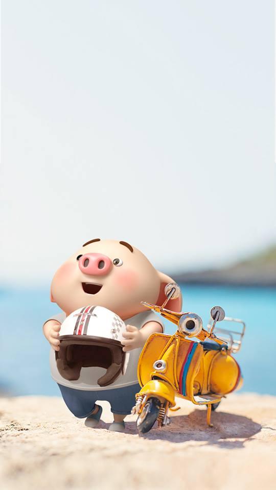 Hình nền chú lợn ủn ỉn hài hước vui nhộn cho điện thoại Iphone đẹp số 24
