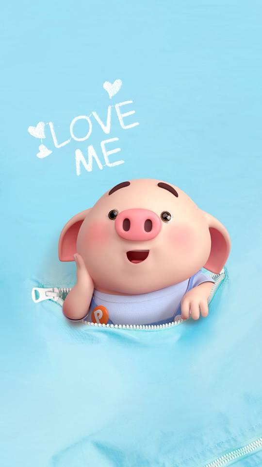 Hình nền chú lợn ủn ỉn hài hước vui nhộn cho điện thoại Iphone đẹp số 3