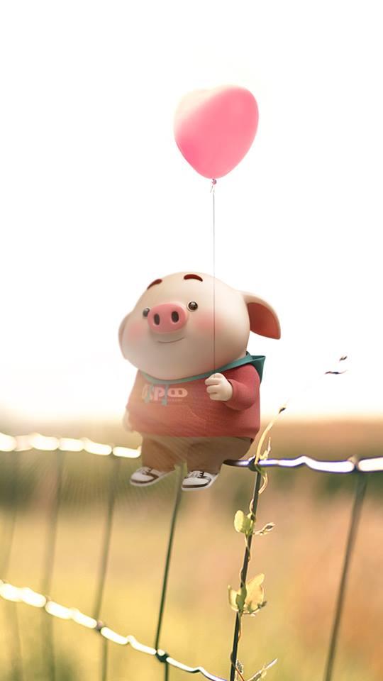 Hình nền chú lợn ủn ỉn hài hước vui nhộn cho điện thoại Iphone đẹp số 8