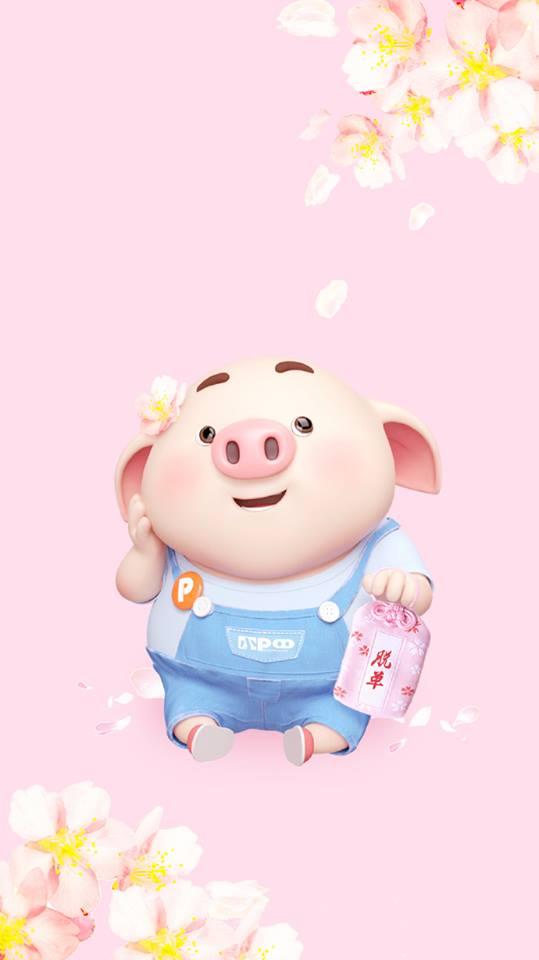 Hình nền chú lợn hồng ủn ỉn trong ngày lễ tình yêu Valentine 14/2 số 4