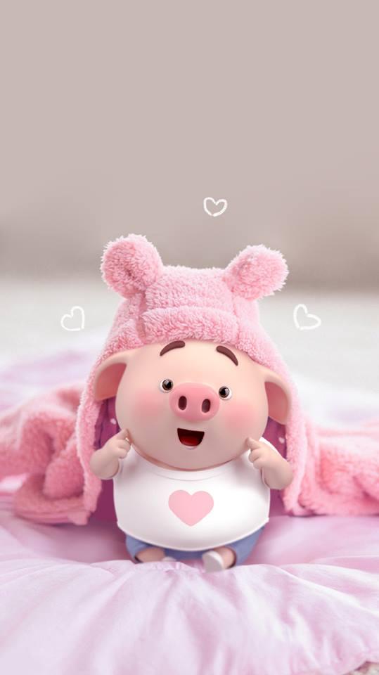 Hình nền chú lợn hồng ủn ỉn trong ngày lễ tình yêu Valentine 14/2