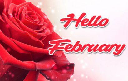 30 ảnh bìa chào tháng 2 – Hello February lãng mạn đầy tâm trạng