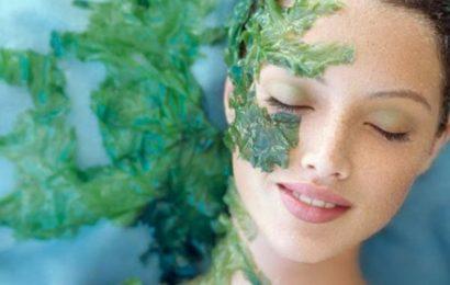 Sunflower cung cấp dịch vụ chăm sóc da mặt với vi kim tảo biển tại Hà Nội uy tín