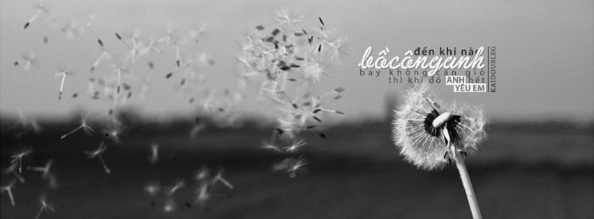 top cover và ảnh bìa hoa bồ công anh bay trong gió kèm số 21