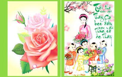 Bộ sưu tập 50 hình ảnh động chúc mừng ngày nhà giáo Việt Nam 20/11 đẹp