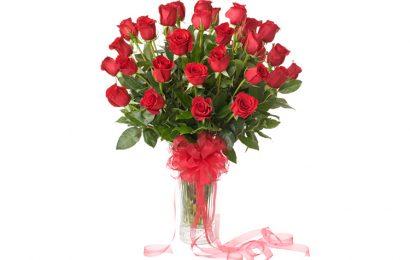 100 lãng và giỏ hoa hồng tặng người yêu ngày lễ tình nhân Valentine đẹp