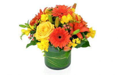 Bức thiệp bó hoa Đồng Tiền chúc mừng sinh nhật và lễ tết đẹp