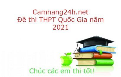 Đề thi và đáp án thi thử tốt nghiệp THPT môn Văn 2021 Nguyễn Viết Xuân- Vĩnh Phúc