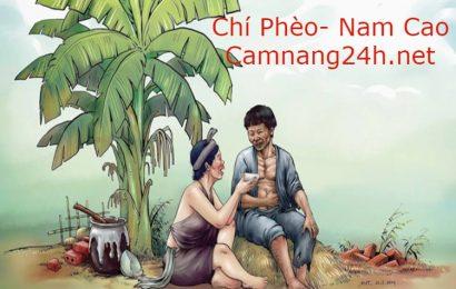 Soạn bài Chí Phèo của Nam Cao phần tác phẩm