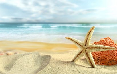 Hình nền bãi biển mùa hè rực rỡ cho điện thoại Oppo Reno5 Marvel