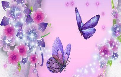 Share hình nền bươm bướm rực rỡ sắc màu cho điện thoại OPPO A15