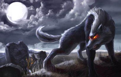 Hình nền chó sói dưới ánh trăng đầy mị hoặc cho điện thoại Oppo A94