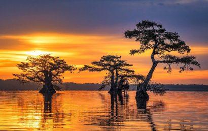 Top 50 hình nền phong cảnh thiên nhiên mặt trời mọc chào buổi sáng