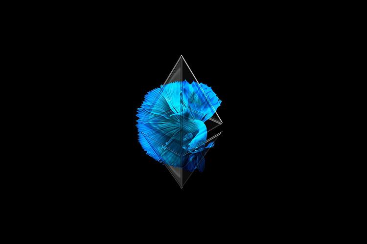 Tuyển tập hình nền tiền điện tử Ethereum đẹp cho máy tính full hd
