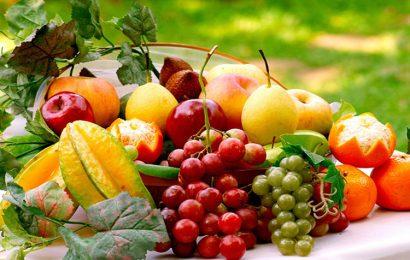 Share 50 hình nền các loại hoa quả đẹp nhất cho điện thoại Vivo V21