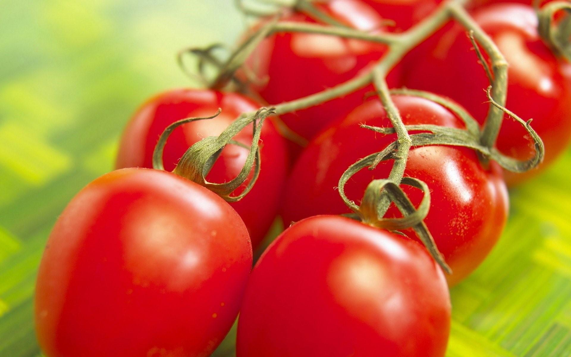 Hình nền quả cà chua đỏ mọng cho máy tính số 14